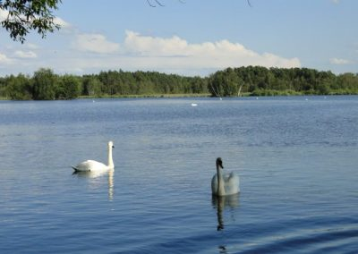Třeboňsko - rybníky