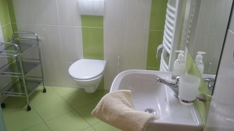 Ubytování Ve Stodůlce Třeboň - Podkroví, koupelna, WC